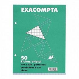 FICHE BRISTOL : EXACOMPTA